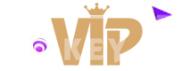 VIP Key Sale logo